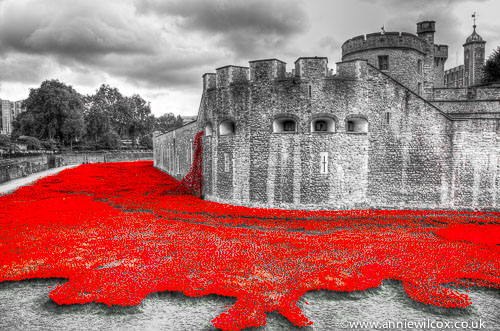 Blood Swept Lands and Seas of Red