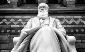 Annie_Wilcox_Photography_travelling_with_a_camera_London_Natural_History_Museum_Charles_Darwin