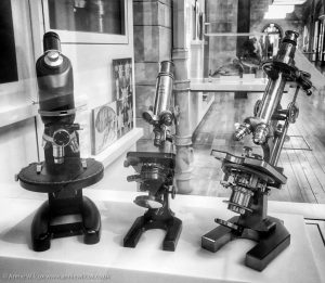 Annie_Wilcox_Photography_travelling_with_a_camera_London_Natural_History_Museum_microscope